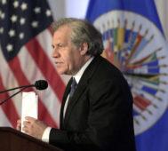 Bolivia: tras avalar el golpe, la OEA estará en las elecciones