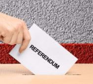 Tres triunfos del Sí y uno del No en el referendo peruano