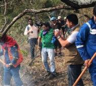 Bolivia: más del 85% de los incendios está contenido