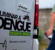 Brasil: muertes por dengue se cuadruplican este año