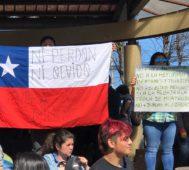 Miles de chilenos marcharon también en el sur del país