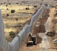 El muro de la vergüenza – Por Celia Varela
