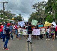 Panamá: mujeres indígenas protestan por tala de árboles