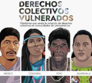 Informe sobre violaciones de derechos a pueblos indígenas