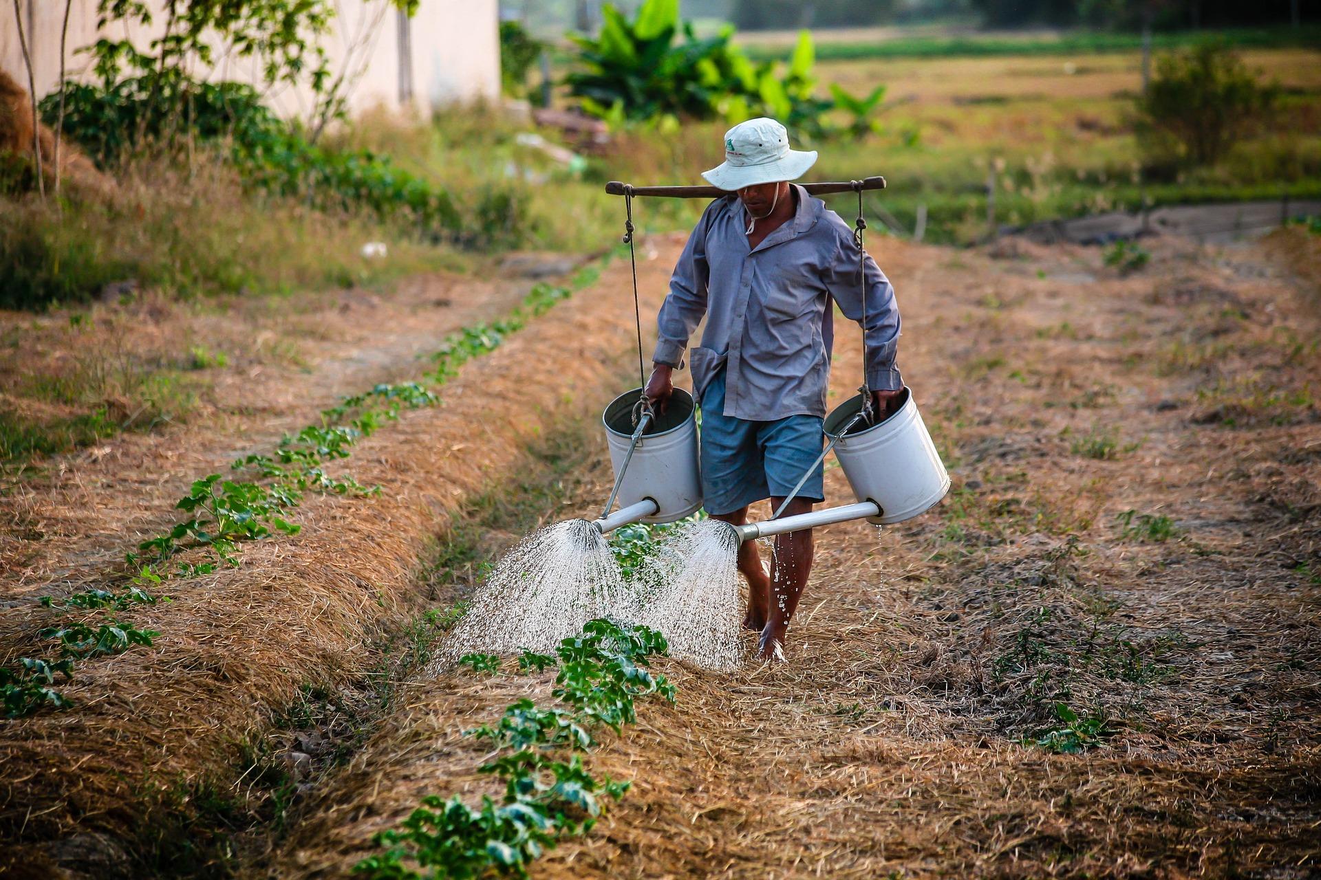 Producir mejores alimentos y producir para todas y todos